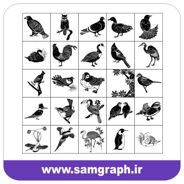 دانلود طرح وکتور انواعی از پرندگان - download birds vector