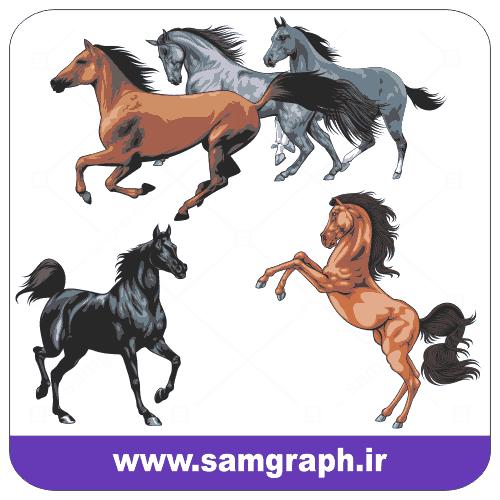 دانلود طرح وکتور اسب زیبا و گرافیکی
