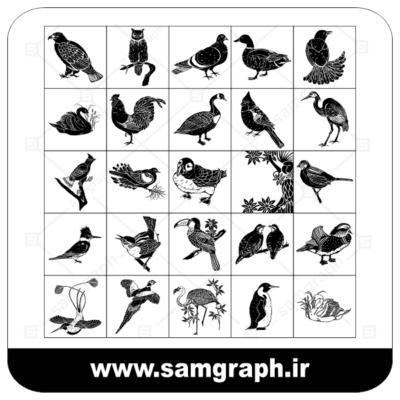 دانلود طرح وکتور پک انواعی از پرندگان - Download birds pack Vector
