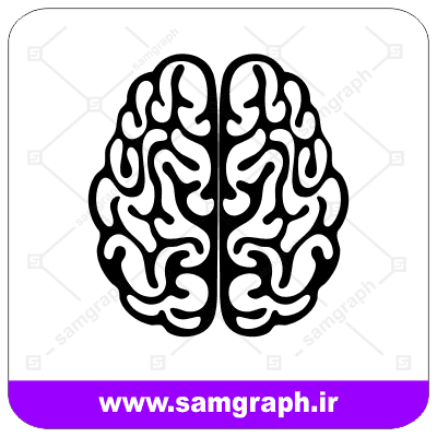 وکتور مغز - Brain vector