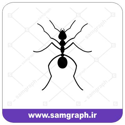 وکتور ایکون مورچه - Ant Icon Vector