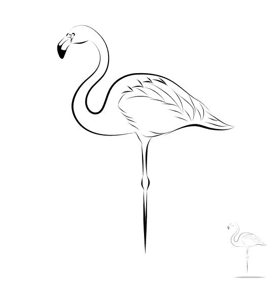 felamingo parande kahti vector 1