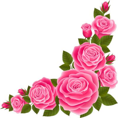 gol roz sorati shakho barg knare konji vector 1