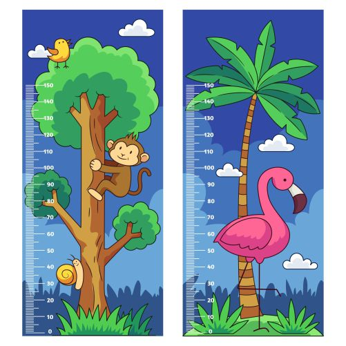 collection hand drawn height meter kids illustrated 1