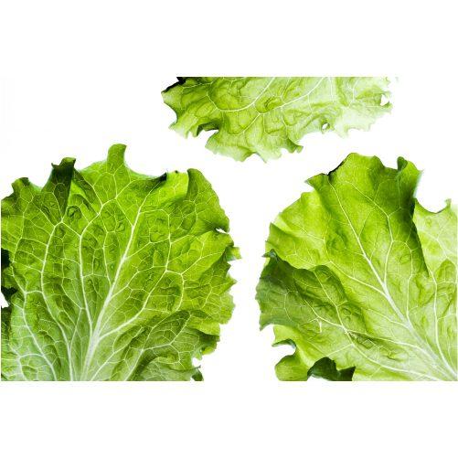 delicious salad 1