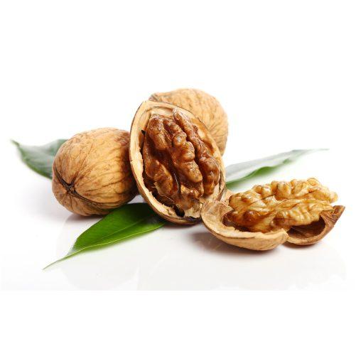 fresh walnut 1