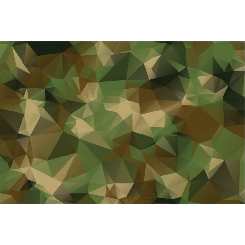 low poly style camouflage pattern texture background 1