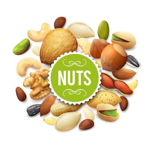 nut collection illustration 1