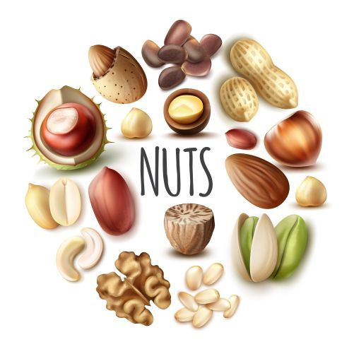 realistic nuts round concept with nutmeg walnut almond 1