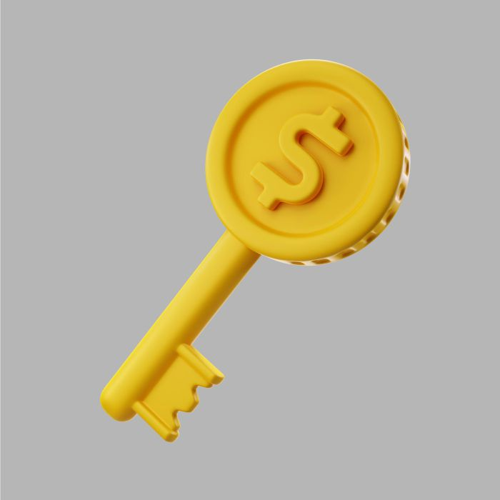 3d golden key with dollar coin