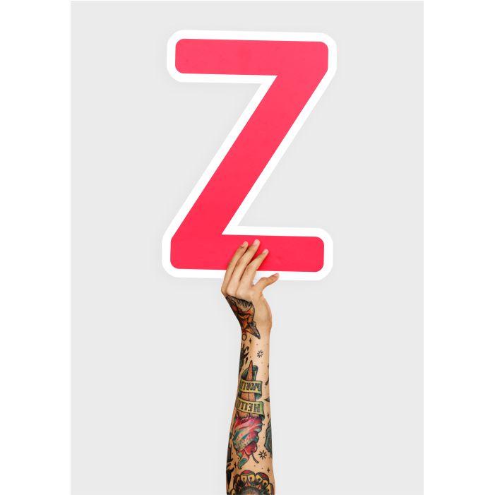 hands holding letter z 1