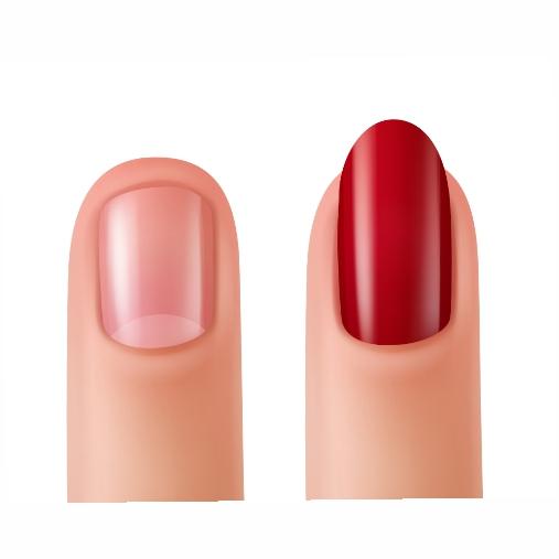illustration nails with nail polish without nail polish 1