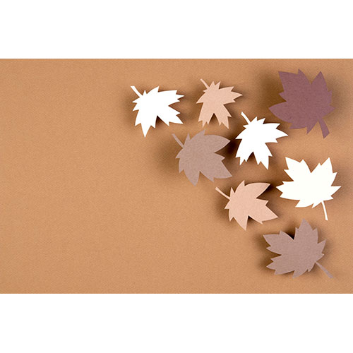 autumn assortment paper style 1